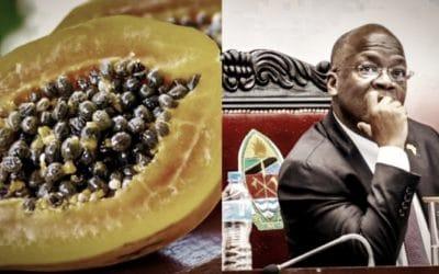 COVID-19 • Une papaye testée positive