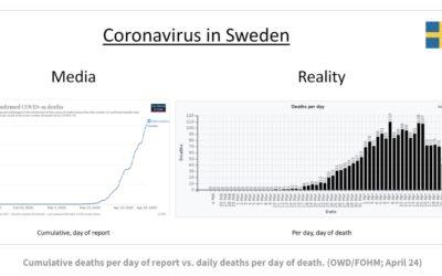 COVID-19 • «une saison de grippe forte»… voire légère