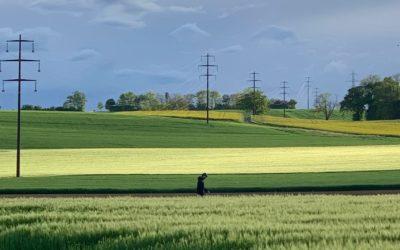 TRIBUNE •Un «oui» à la loi contre les pesticides de synthèse